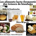 aliments-lacto-fermentes